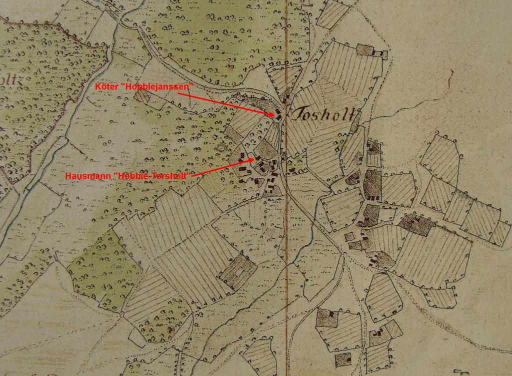 Höfe in Torsholt in Vogteikarte von 1793