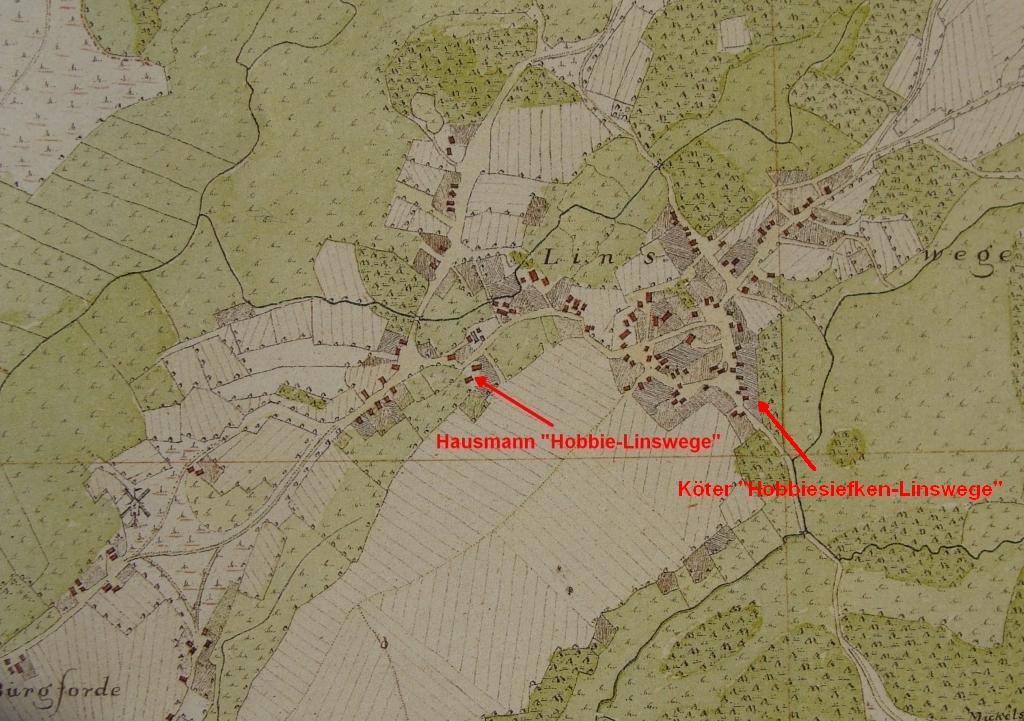Stammhaus & Köterei in Linswege in Vogteikarte von 1793